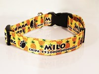 Personalized Pet ID Collar