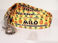 Personalized Pet ID Leash
