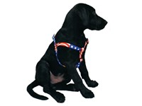 Personalized ID Step In Pet Harness
