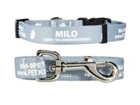Personalized ID Collar and Leash Combo