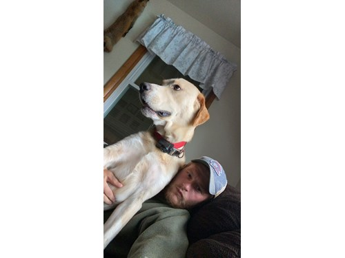 Lost Pet #133155