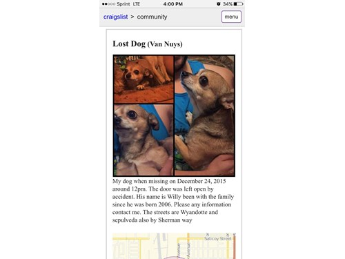 Willy, a lost dog, is missing in Van Nuys, CA 91406